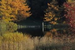 Karsee_H-E-H_Badeplatz-Herbst